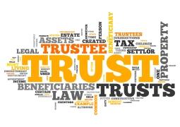 Wordcloud Trust